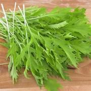 Salade moutarde verte ou rouge à feuilles de Louis Coustabeau (la roque 13) (121319)
