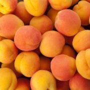 Abricots de Oliver Serradimigni (La Fare les Oliviers 13)+/- (400177)