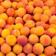 Abricots de Oliver Serradimigni (La Fare les Oliviers 13) x 500 grammes