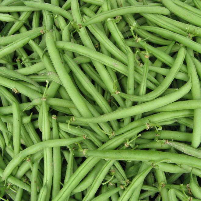 Haricots verts de Sylvie Augier (Saint Saturnin lès Apt 84) X 300 grammes