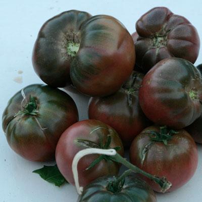 Tomates anciennes de Jean Serradimigni (La Fare les Oliviers 13)x 500g