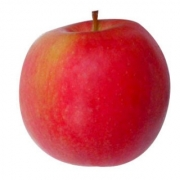 Pommes Pink Lady  de Frédéric Ayme (Fontvieille 13 ) X 500g